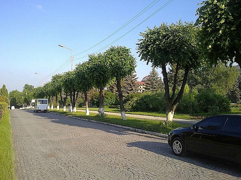 Влітку по вул Коріатовичів