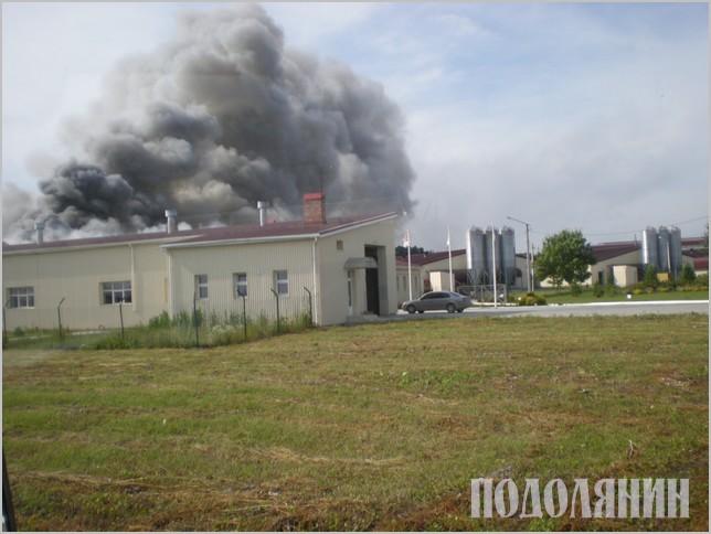 Наслідок масштабної пожежі на ПАТ «Авіс» наприкінці червня - ущент вигорілий пташник  та 250 тисяч спопелілих курей