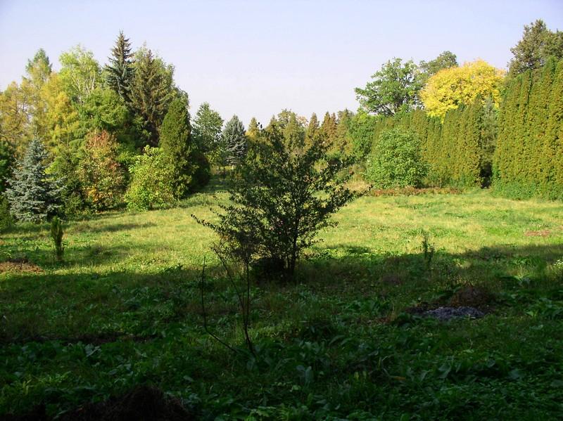Експозиційна ділянка деревних рослин